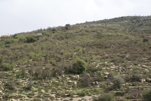 land in btalloun