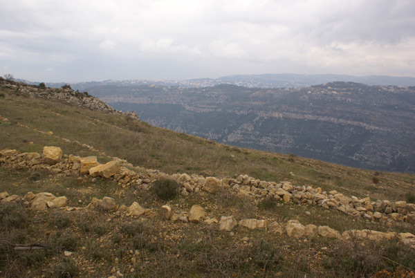 abadiyeh lebanon land for sale
