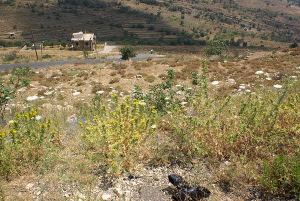 bhamdoun liban land for sale