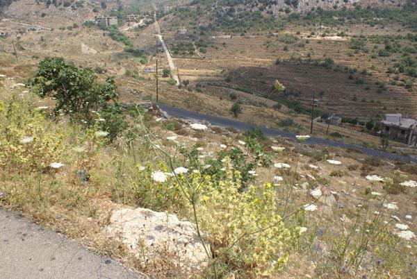 bhamdoun lebanon real estate