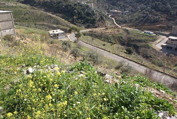 bkhechtay lebanon property sale