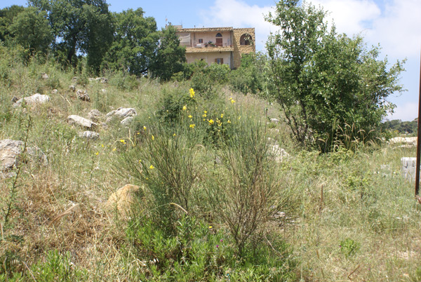aley ketteneh area land sale