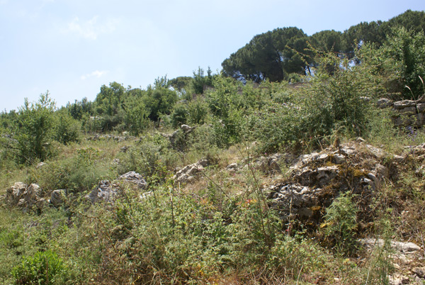 aley lebanon land 4 sale