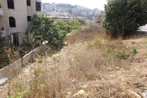 property sales aley lebanon