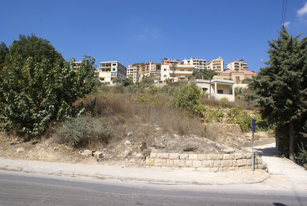 development land sale aley