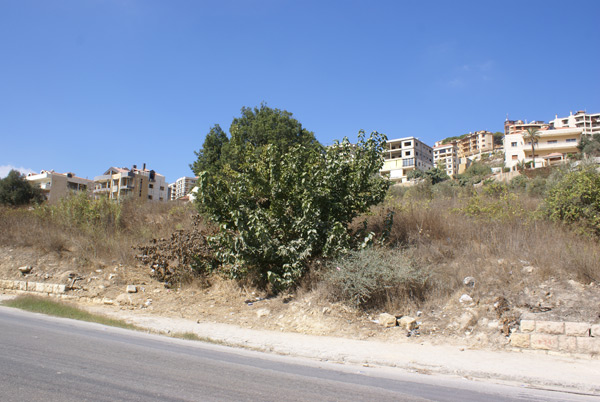 aley commercial land for sale zone c