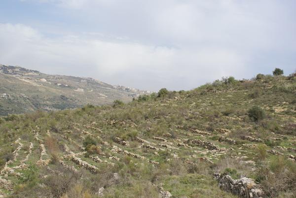 btalloun land sale