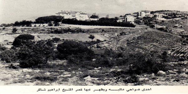 aley-1960s-ibrahim-shakir-palace