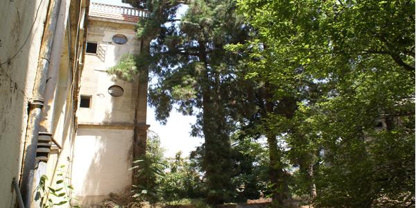 jbaily-aley-hotel-gardens