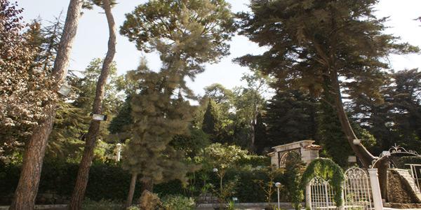 villa-asmahan-aley-trees-garden